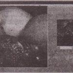 The ScroliBar and Slider Controls
