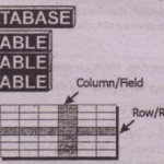 Understanding Databases and Database Management Systems