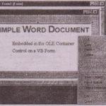 The OLE Control's Shortcut Menu